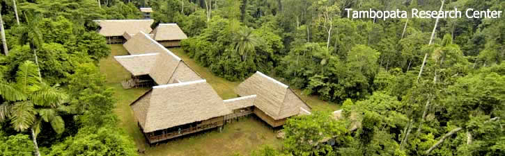 Tambopata Research Center - Rainforest Expeditions
